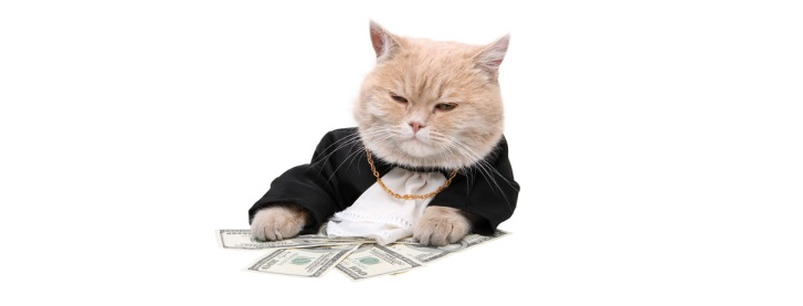 fat cat bosses ceo executive pay