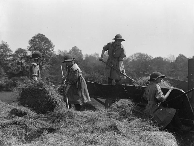 Women's land army forage corps feed a hay baler From IWM