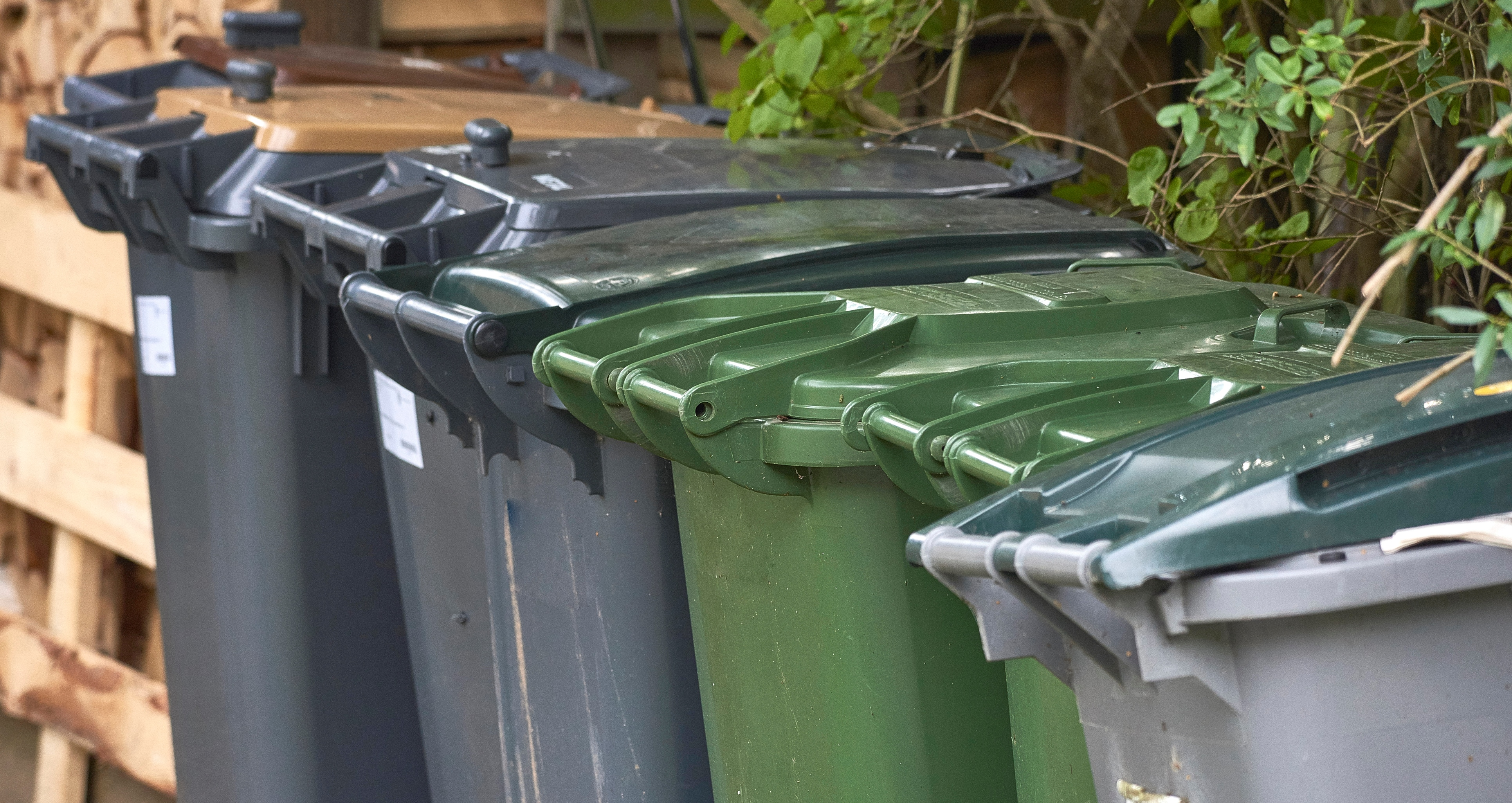 bin strike waste refuse